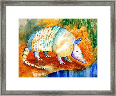Armadillo Reflections Framed Print by Carlin Blahnik