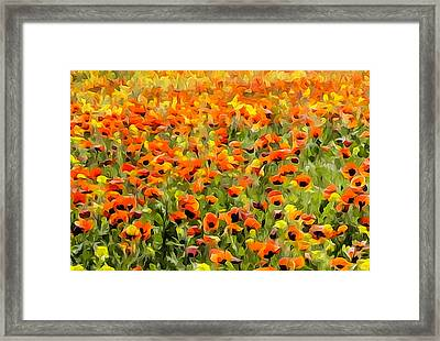 Armenia Flowers In Spring Framed Print by Dennis Cox