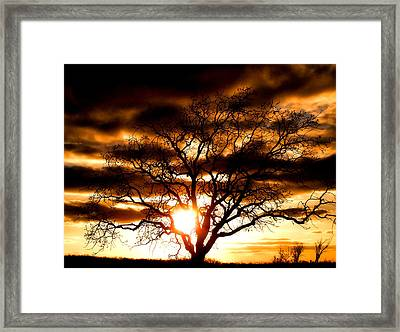 Arms Wide Open Framed Print by Karen Scovill