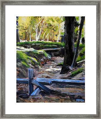 Armstrong Woods Framed Print by Richard  Willson