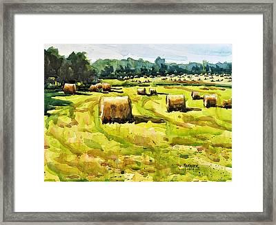 Army Of Hay Bales Framed Print