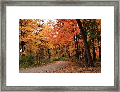 Around Every Curve Framed Print by Lyle Hatch