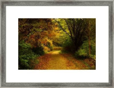 Framed Print featuring the photograph Around The Bend - Landscape by Anthony Rego