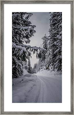 Around The Bend Framed Print by Albert Seger