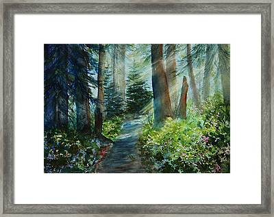 Around The Path Framed Print