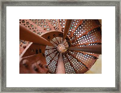 Around The Twist Framed Print by Susette Lacsina