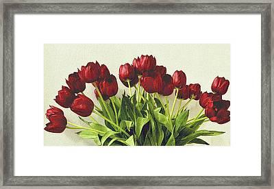 Array Of Red Tulips Framed Print by Nadalyn Larsen