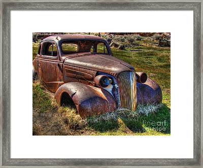 Arrested Decay Framed Print