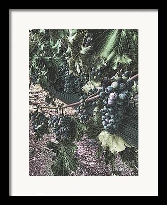 Arrington Fine Art Framed Prints