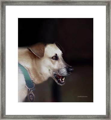 Art By Cooper 8 Framed Print
