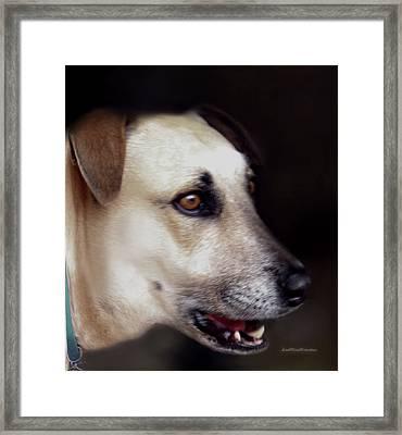 Art By Cooper 9 Framed Print