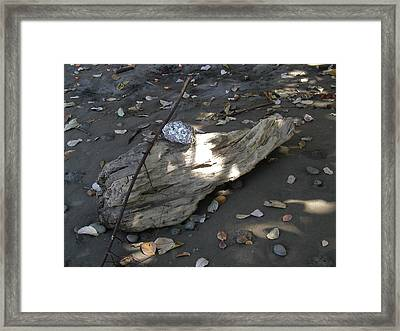 Art By Nature Framed Print by Gregory Young