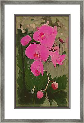 Art Deco Orchids Framed Print by Mindy Newman