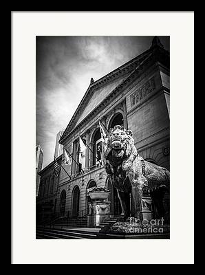 Urban Lion Framed Prints