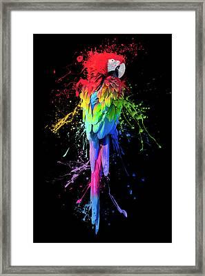 Art Interrupted Framed Print by Janet Fikar