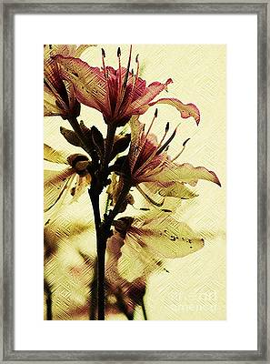 Art On Wall Paper Framed Print