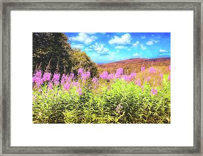 Art Photo Of Vermont Rolling Hills With Pink Flowers In The Foreground Framed Print
