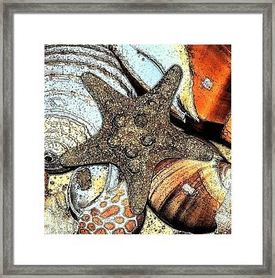 Art Shell 1 Framed Print