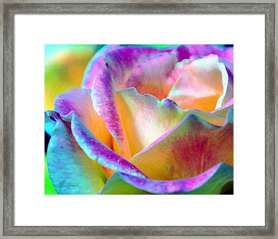 Artful Colorful Rose Framed Print by Lorrie Morrison