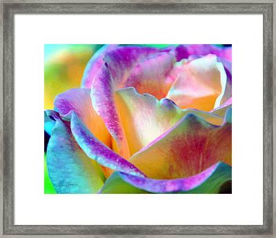 Artful Colorful Rose Framed Print by Lorrie Morrison
