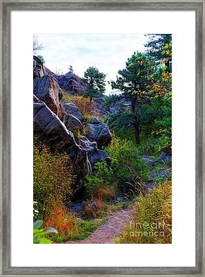 Arthur's Rock Trail Framed Print by Jon Burch Photography