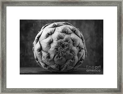 Artichoke Black And White Still Life Two Framed Print