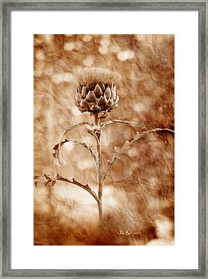 Artichoke Bloom Framed Print by La Rae  Roberts
