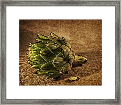 Artichoke Still Life Framed Print