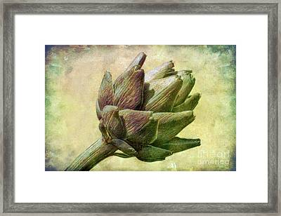 Artichoke Framed Print by Susan Isakson