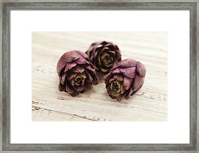 Artichokes Framed Print by James And James
