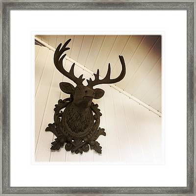 Artificial Deer Antlers Framed Print by Matthias Hauser