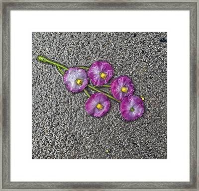 Artificial Flowers After A Storm 1 Framed Print
