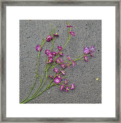 Artificial Flowers After A Storm 2 Framed Print