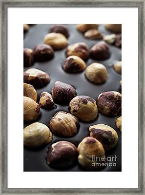 Artisanal Chocolate With Hazelnuts Framed Print