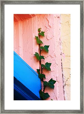 Artistic Design In The Paseo Framed Print by Toni Hopper