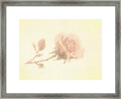Framed Print featuring the photograph Artistic Etched Rose by Linda Phelps