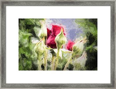Artistic Rose And Buds Framed Print