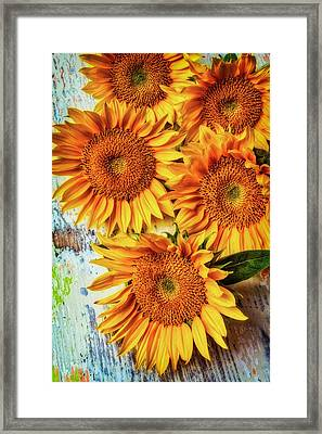 Artistic Sunflowers Framed Print by Garry Gay