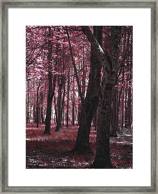 Framed Print featuring the photograph Artistic Tree In Pink by Michelle Audas