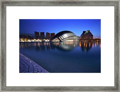 Arts And Science Museum Valencia Framed Print