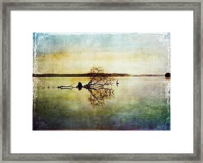Artsy Lake Reflections Framed Print