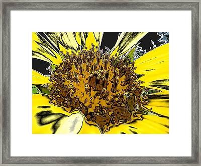 Artsy Sunflower Framed Print by Sonya Chalmers