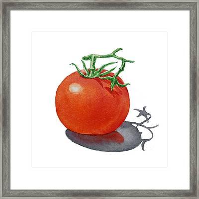 Artz Vitamins Tomato Framed Print by Irina Sztukowski