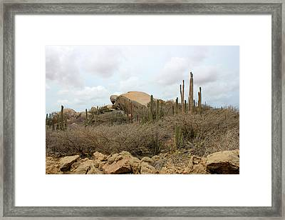 Aruba Desert Landscape Framed Print by Design Turnpike