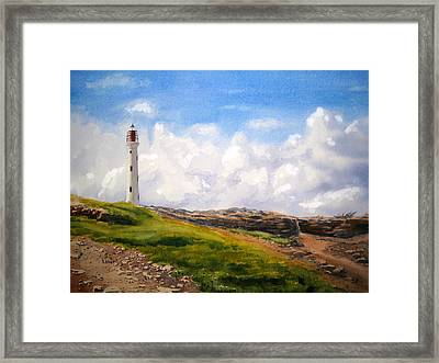 Aruba Sentry Framed Print