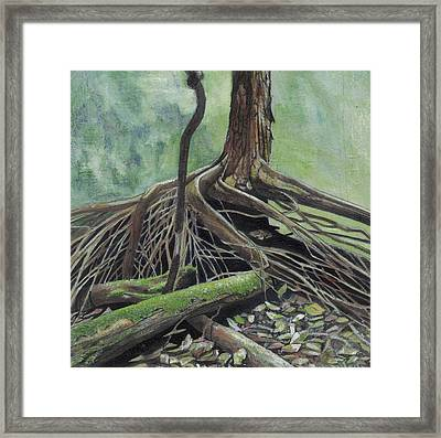 Arvore Framed Print by Nelson Caramico