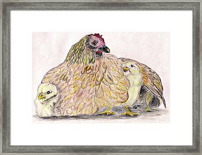 As A Hen Gathereth Her Chickens Under Her Wings Framed Print