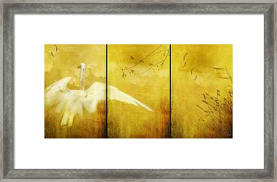 As Birds Fly Up..... Framed Print by Margaret Hormann Bfa