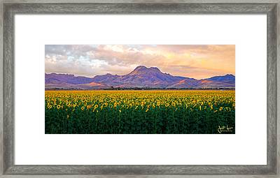 As Far As The Eye Can See  Framed Print