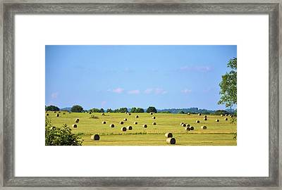 As Far As You Can See Framed Print